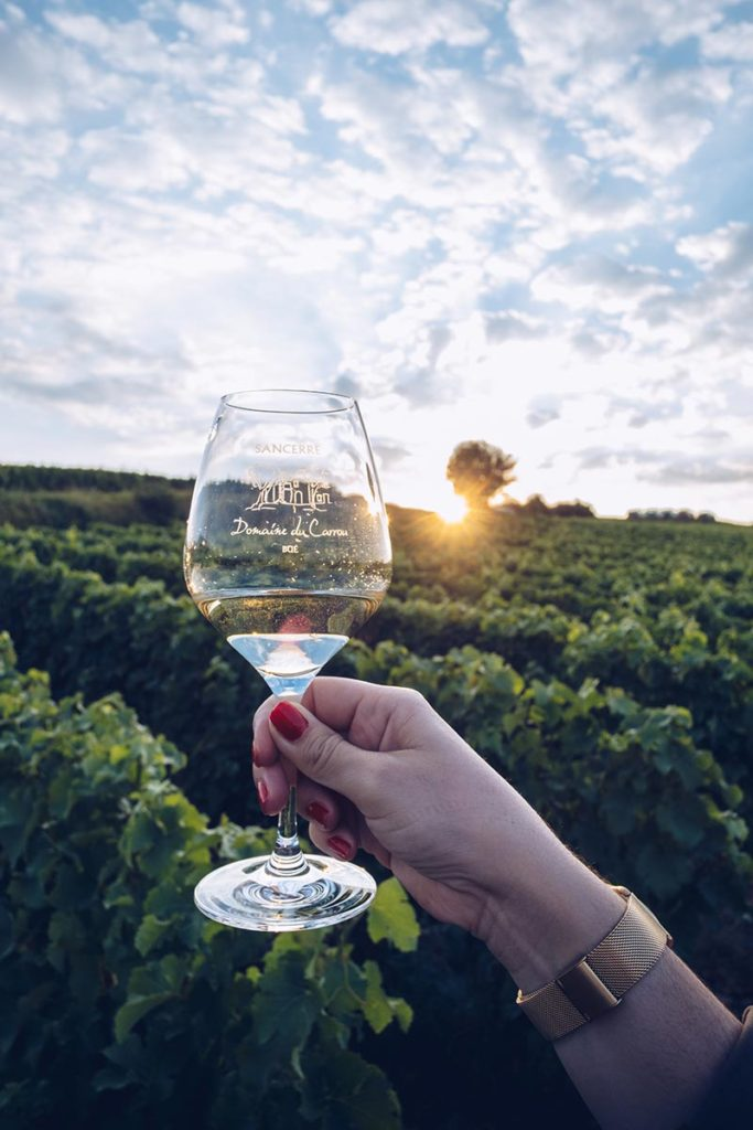 Refuse to hibernate Sancerre sunset and wine focus verre