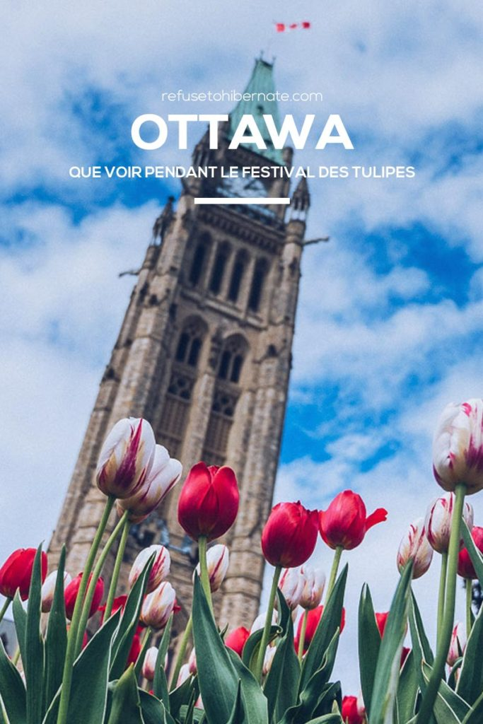 Refuse to hibernate Ottawa tulipes Pinterest
