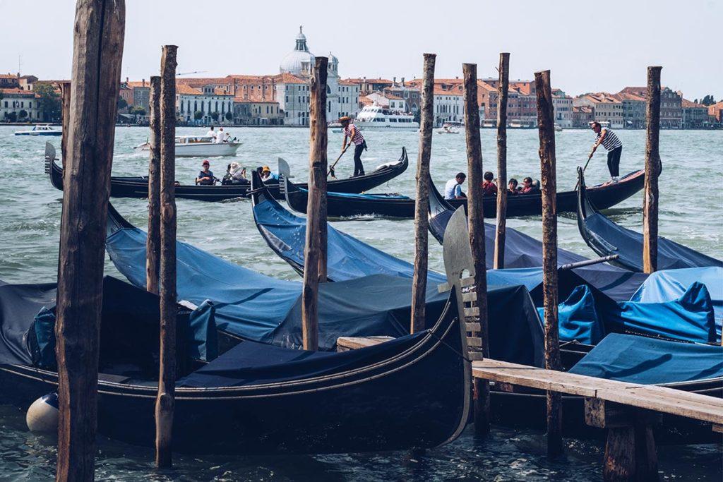 Refuse to hibernate Venise Place Saint-Marc gondoles