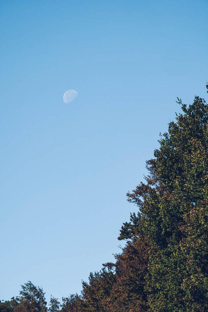 Eure-et-Loir domaine du Bois Landry lune Refuse to hibernate