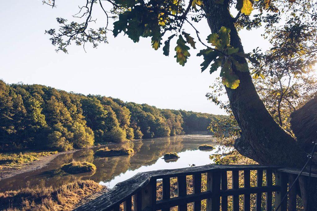 Eure-et-Loir domaine du Bois Landry vue de la cabane matin Refuse to hibernate