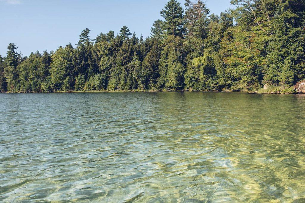 Refuse to hibernate Québec lac des 31 milles eau claire