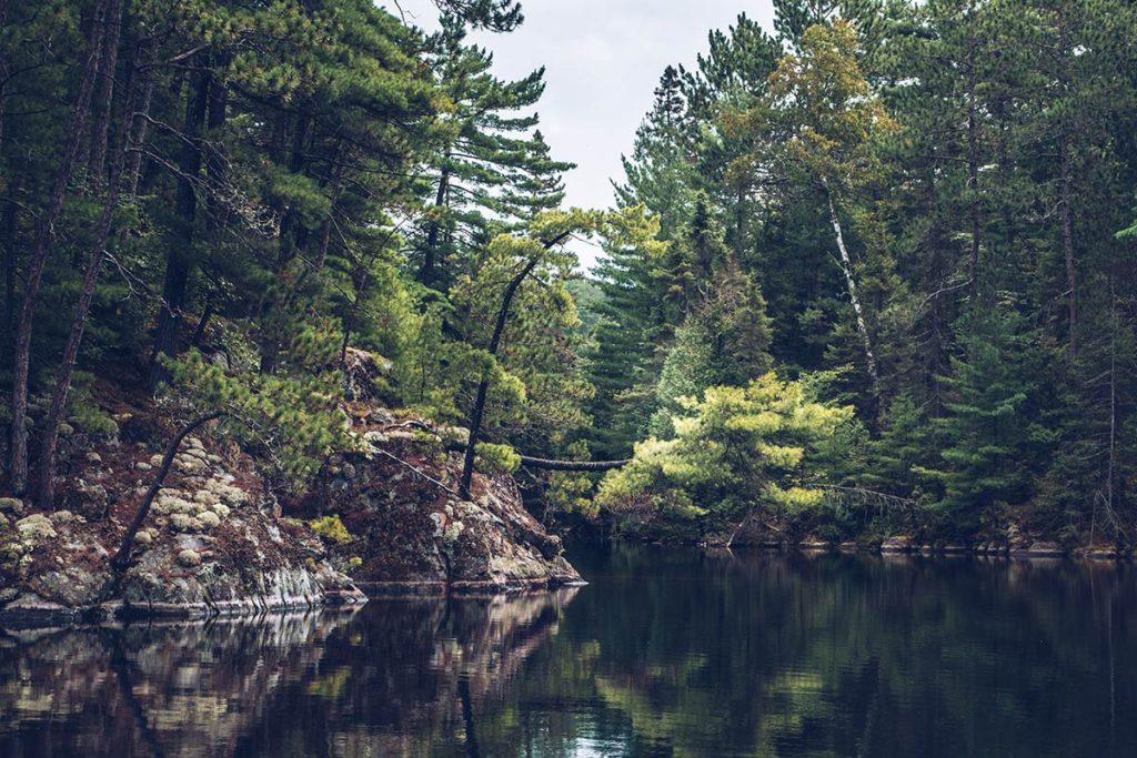 Refuse to hibernate Québec lac Kipawa réflexion