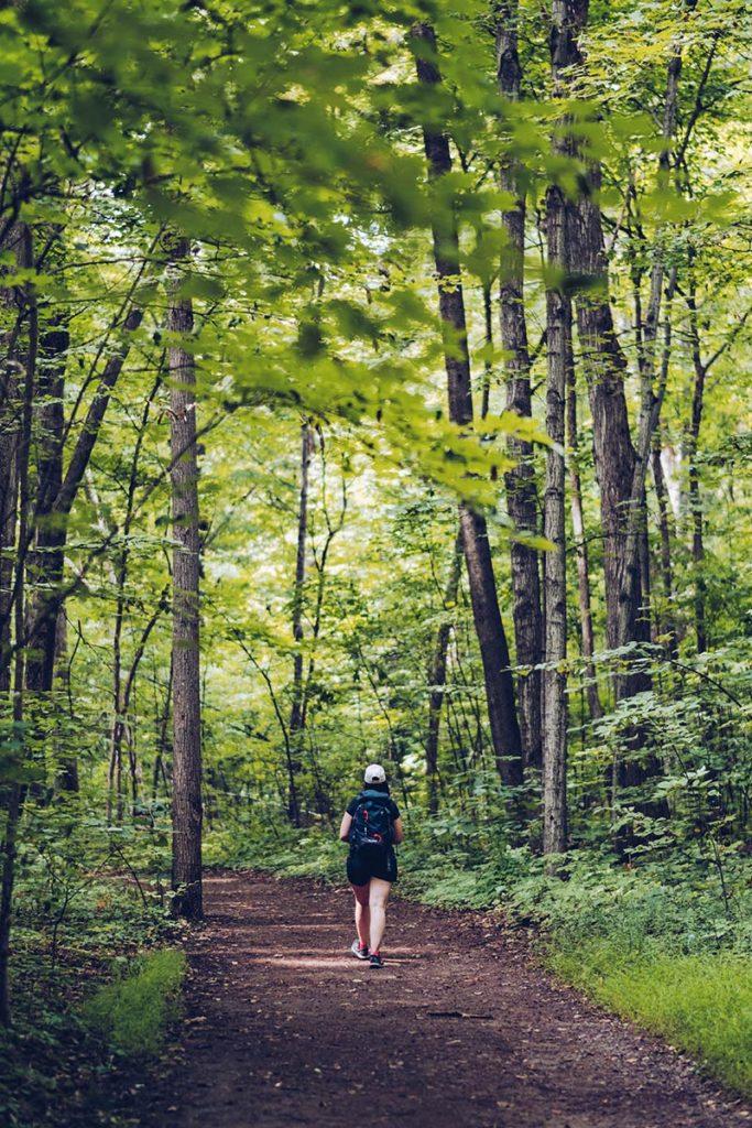 Refuse to hibernate Québec Parc national Oka chemin