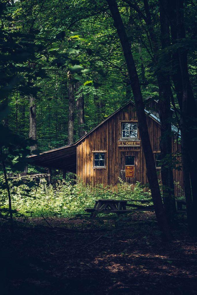 Refuse to hibernate Québec Parc national Oka l'Orée