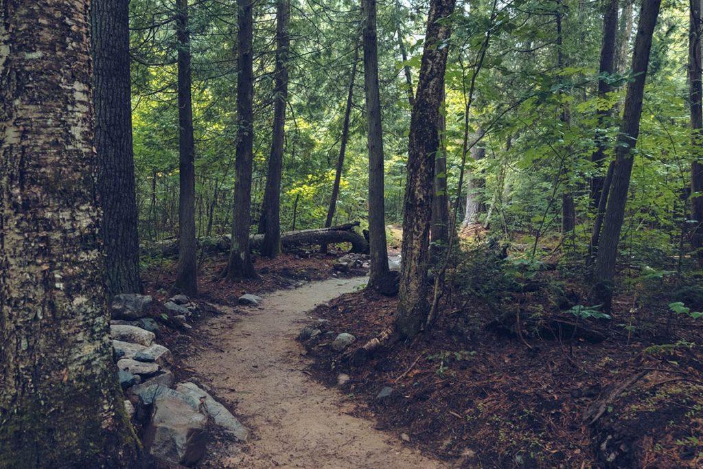 Refuse to hibernate Québec Parc national Opemican sentier Inukshuk