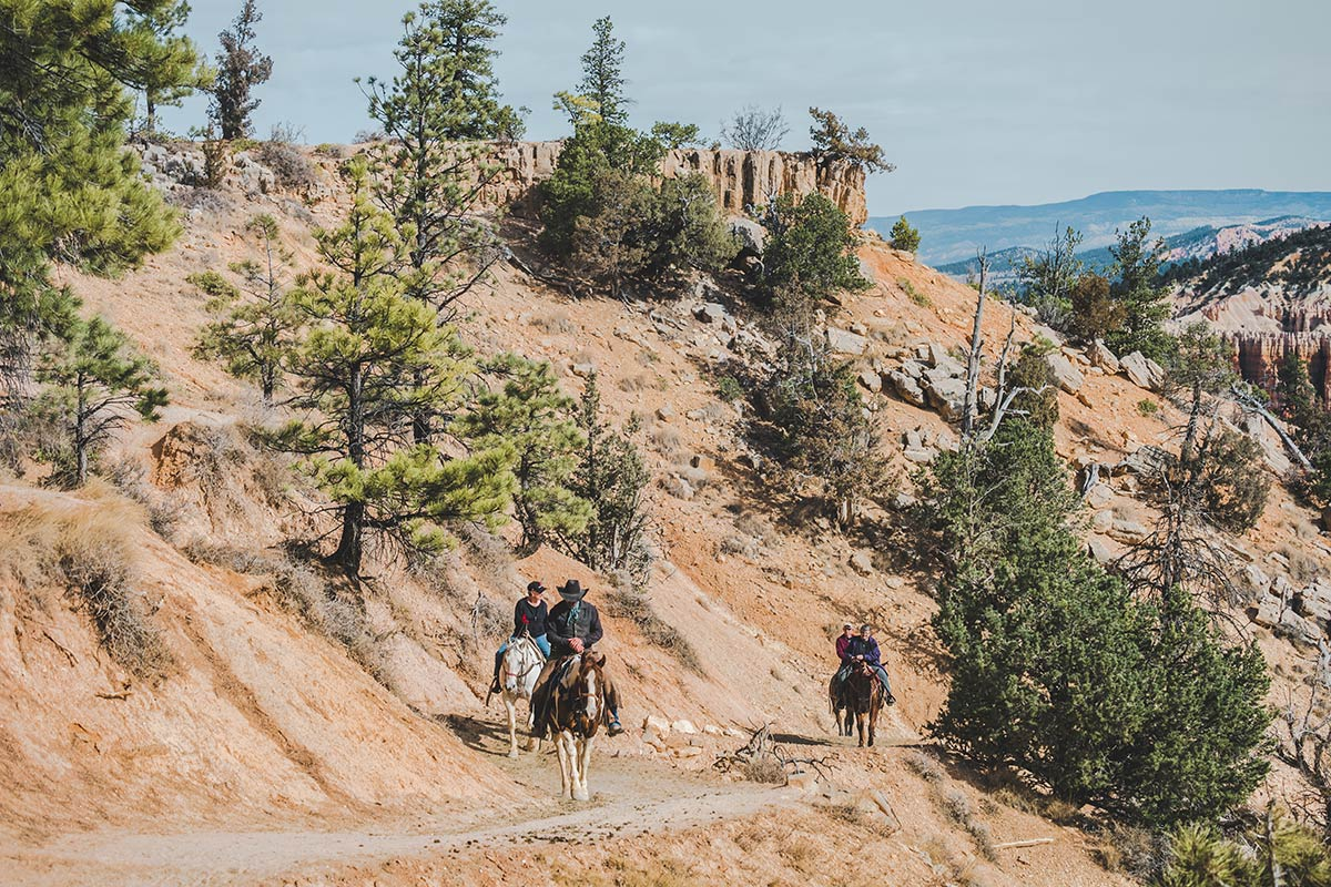 Utah Bryce Canyon Horse trail chevaux Refuse to hibernate