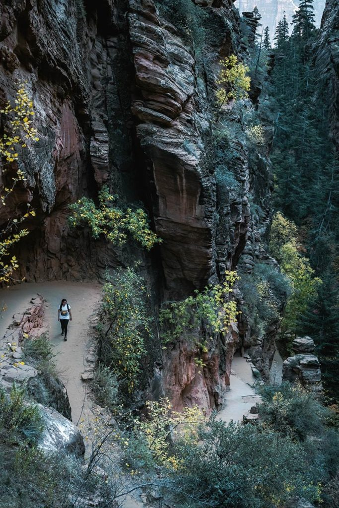 Utah Zion National Park Angels landing trail Audrey sentier Refuse to hibernate