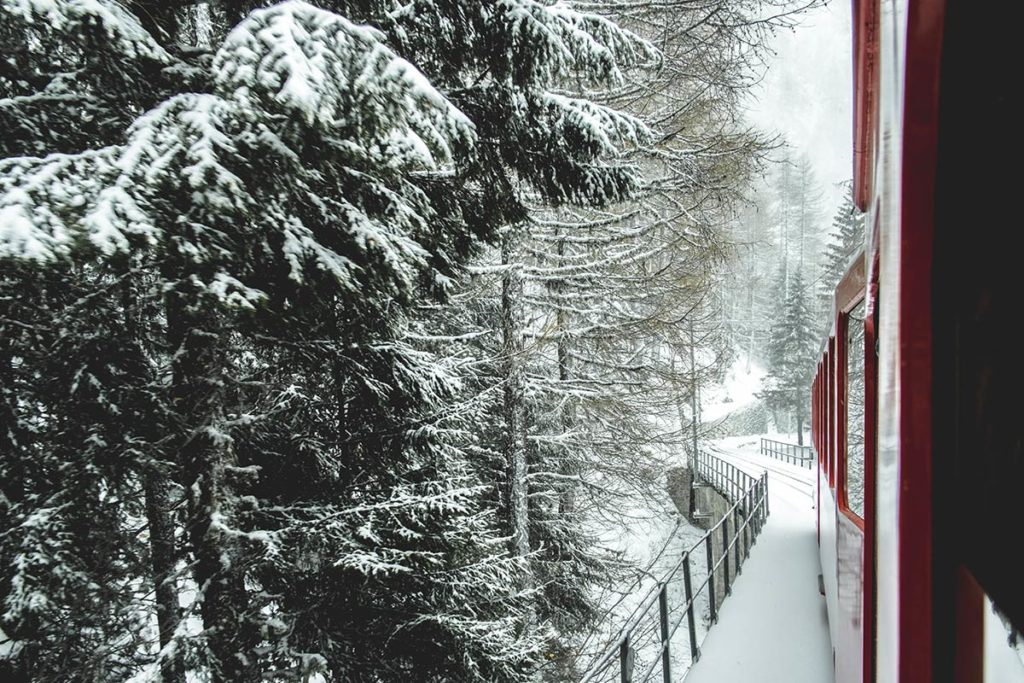 Chamonix train neige Chemin de fer du Montenvers Refuse to hibernate
