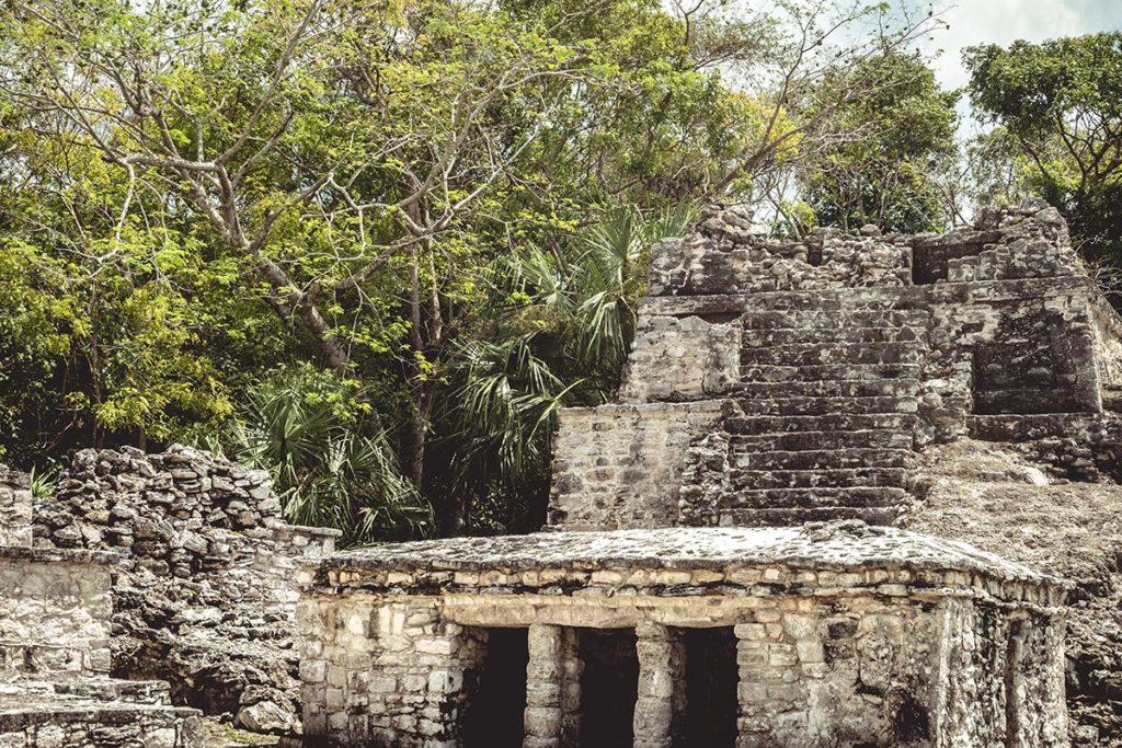 Sian Ka'an réserve les ruines de Muyil Refuse to hibernate focus