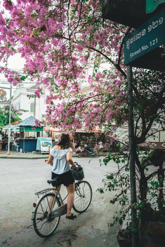 Cambodge Battambang balade vélo Refuse to hibernate