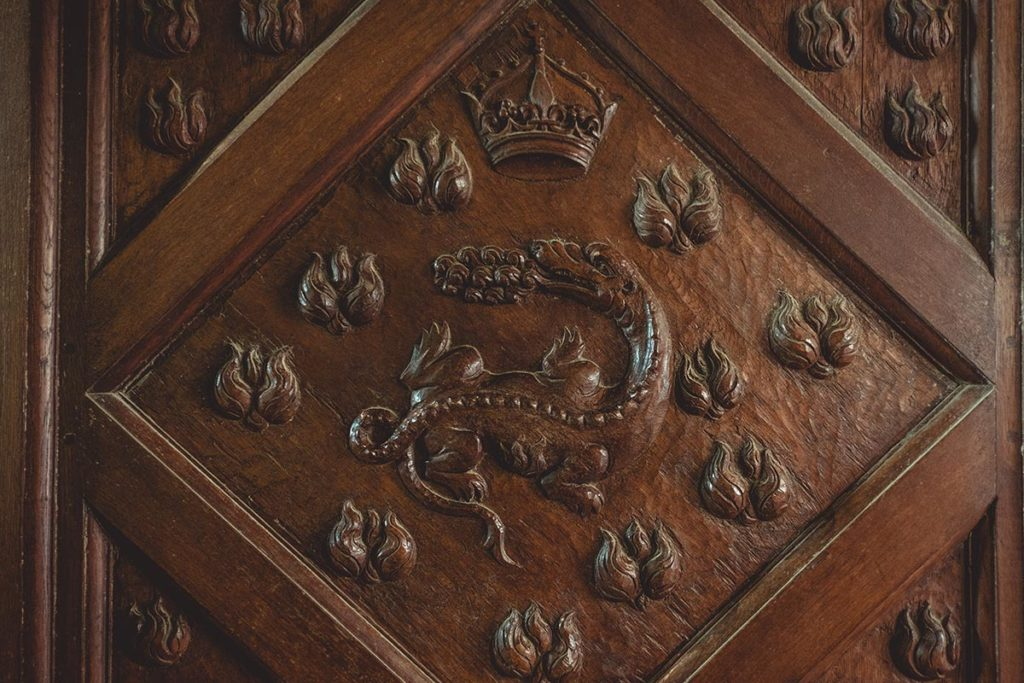 Châteaux de la Loire Chambord salamandre Francois 1er Refuse to hibernate