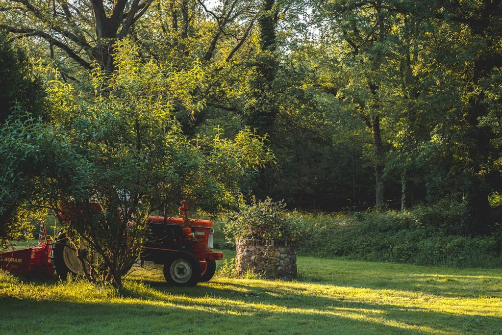 Châteaux de la Loire Logis de Bois Renard jardin Refuse to hibernate
