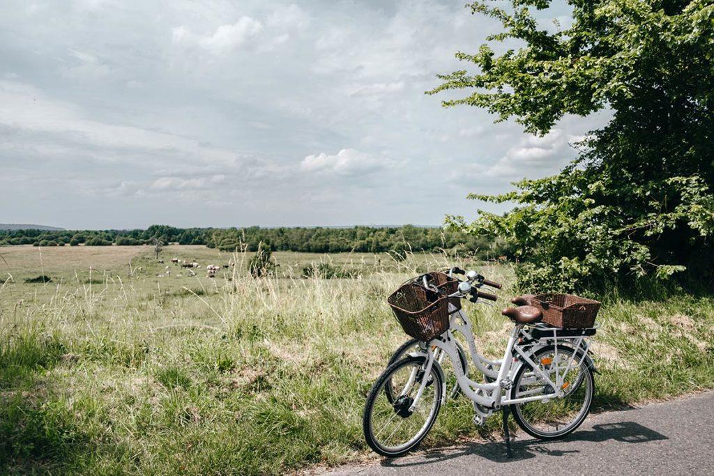 Eure Marais Vernier vélos électriques les Cigognes Refuse to hibernate