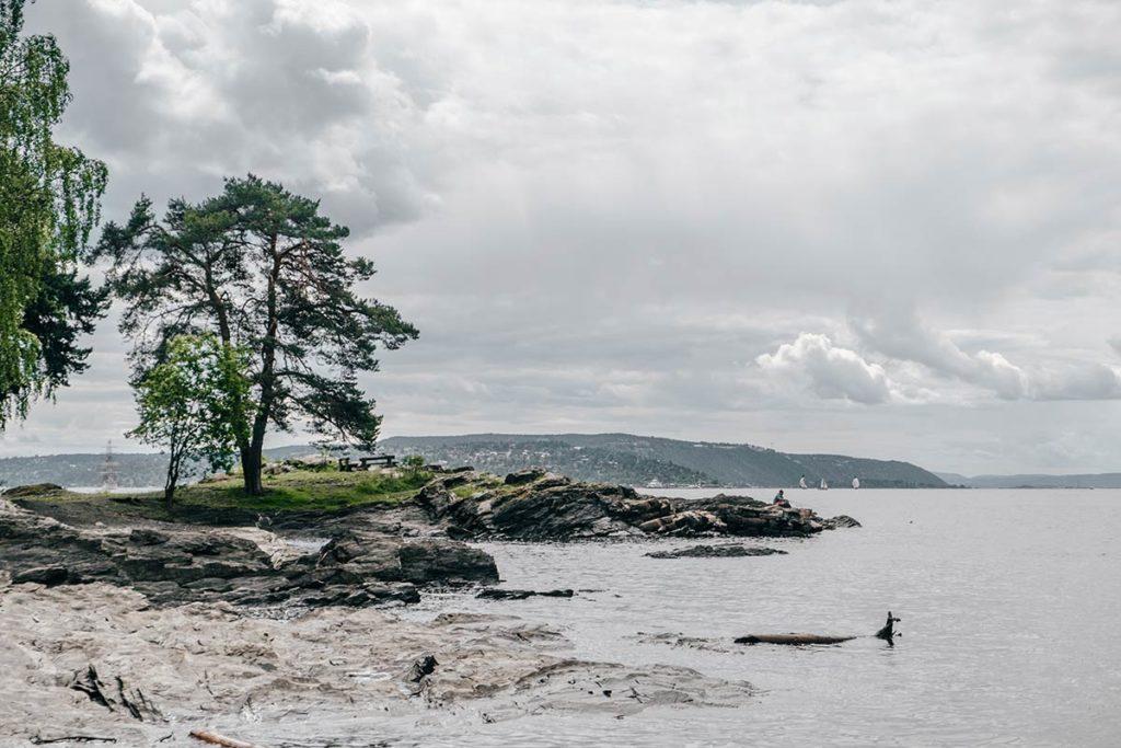 Oslo plage de Paradisbukta Refuse to hibernate