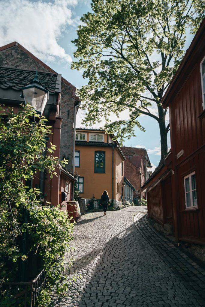 Oslo rue Damstredet ensoleillé Refuse to hibernate