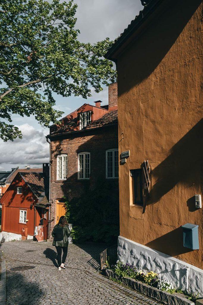 Oslo rue Damstredet Refuse to hibernate