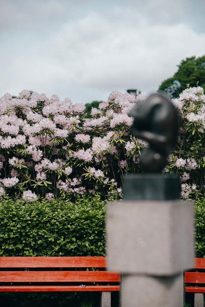 Oslo Vigeland Park fleurs focus Refuse to hibernate