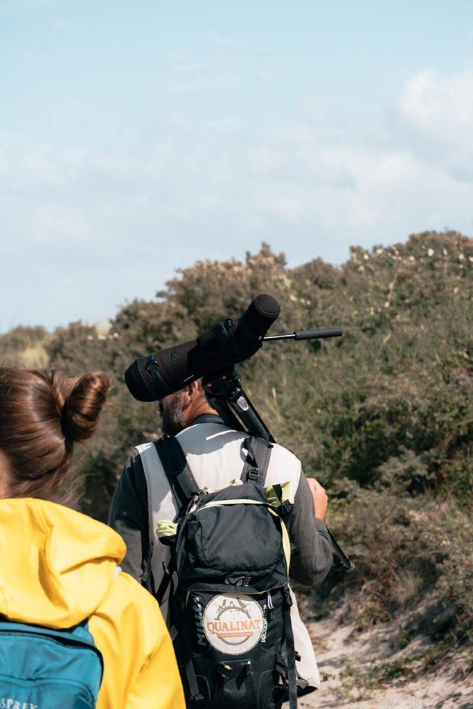 Baie de Somme observation des phoques avec guide Refuse to hibernate