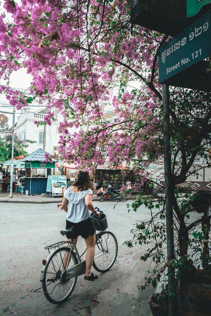 Battambang à vélo centre-ville Audrey Refuse to hibernate