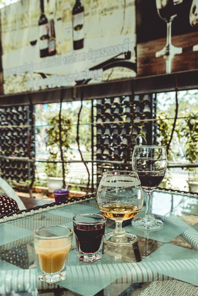 Battambang dégustation du vin Refuse to hibernate