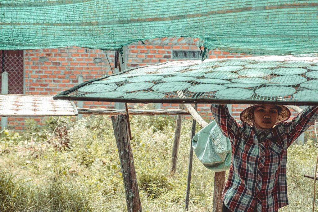 Battambang fabrique de galettes de riz séchage Refuse to hibernate