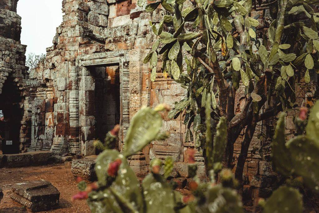 Battambang visiter Wat Banan Refuse to hibernate