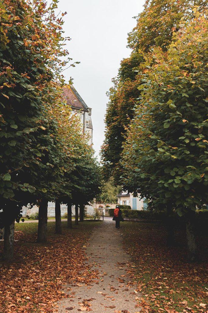 allée abbaye Saint-Jean-aux-Bois couleurs automnales