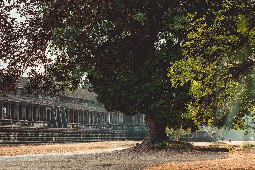 Temple d'Angkor Wat visite jardin Refuse to hibernate