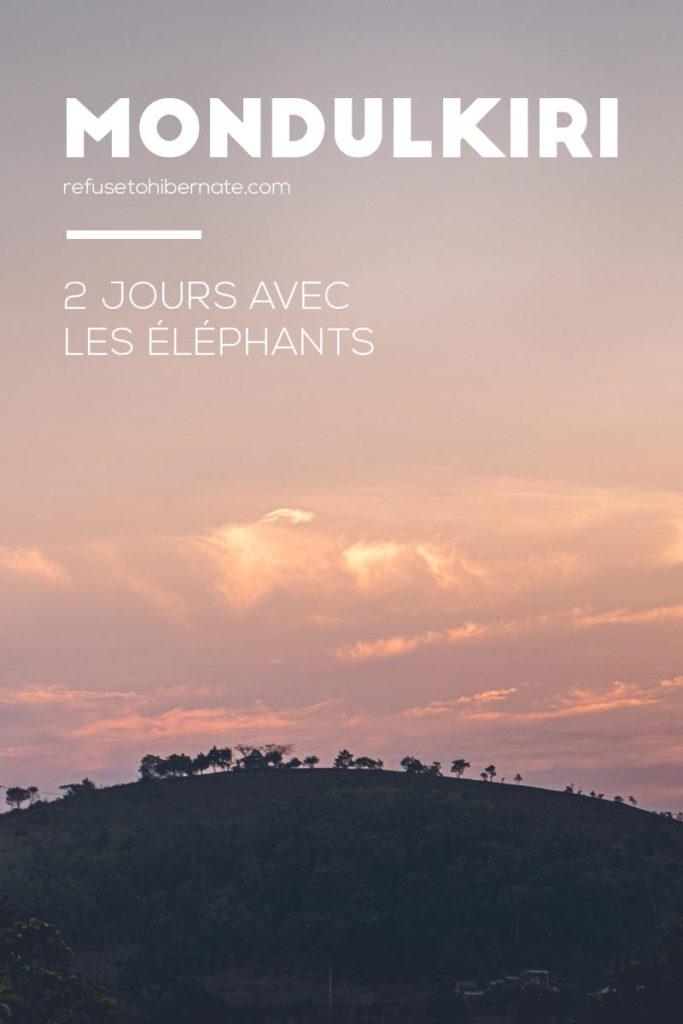 2 jours éléphants Mondulkiri Pinterest