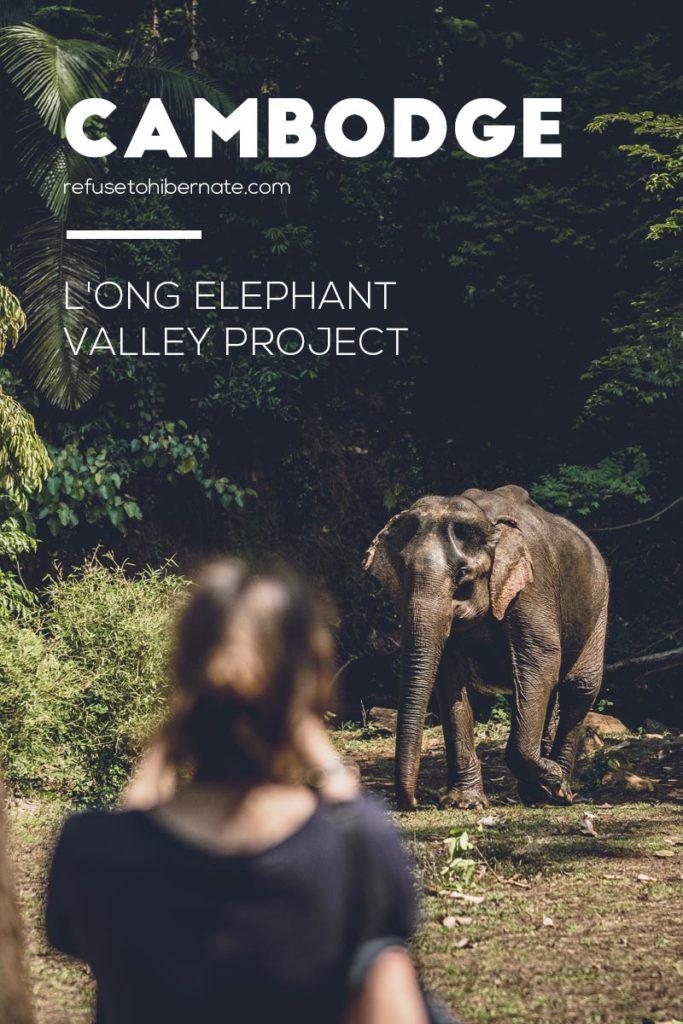 ong Elephant Valley Project dans le Mondulkiri Pinterest