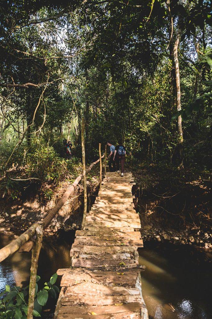 pont jungle Mondulkiri Refuse to hibernate