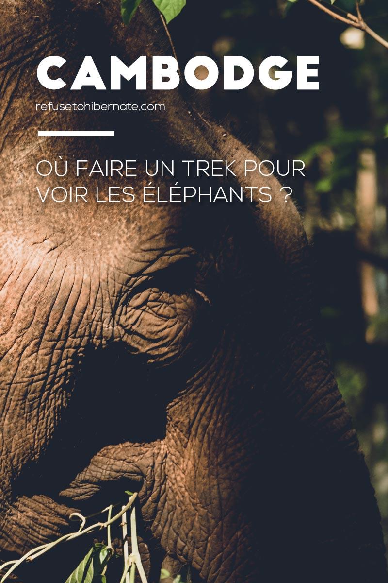 trek voir éléphants Mondulkiri Pinterest
