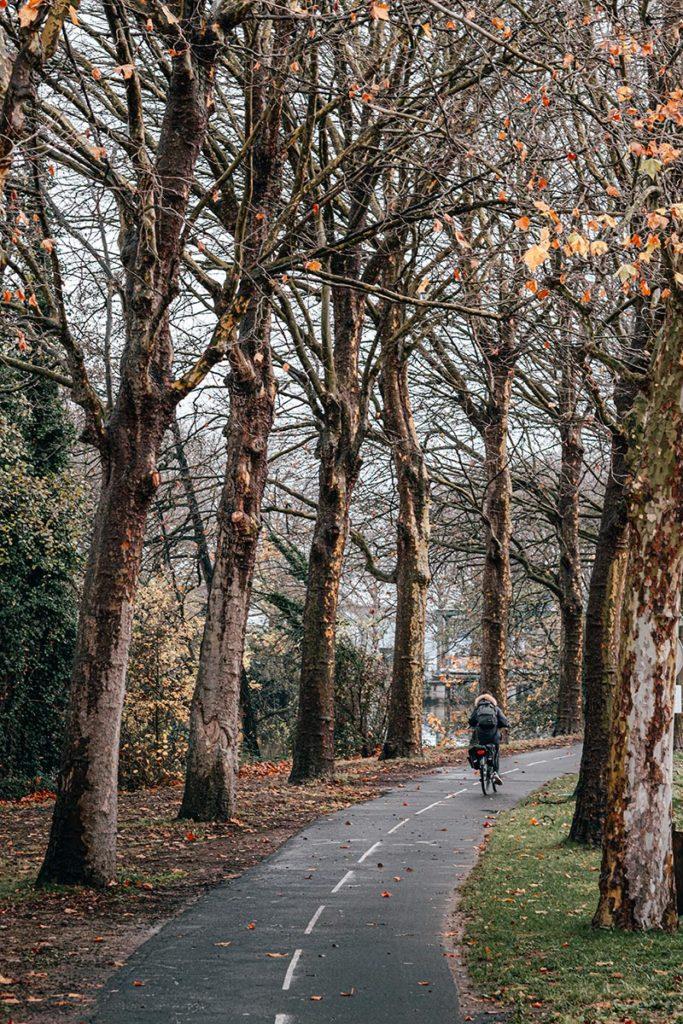 piste cyclable le long de l'Orne Caen Refuse to hibernate