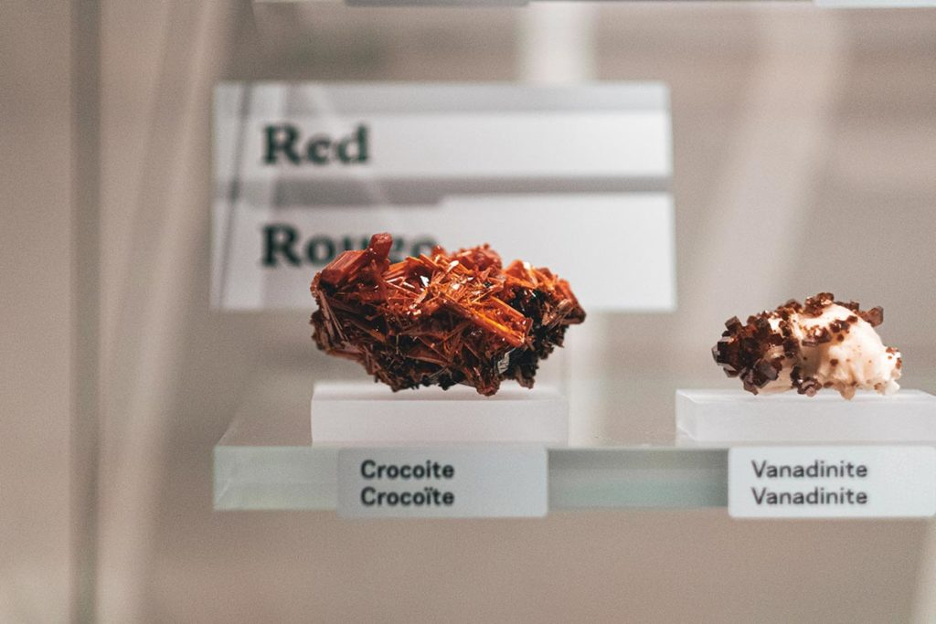 Royal Alberta Museum crocoïte Edmonton Refuse to hibernate