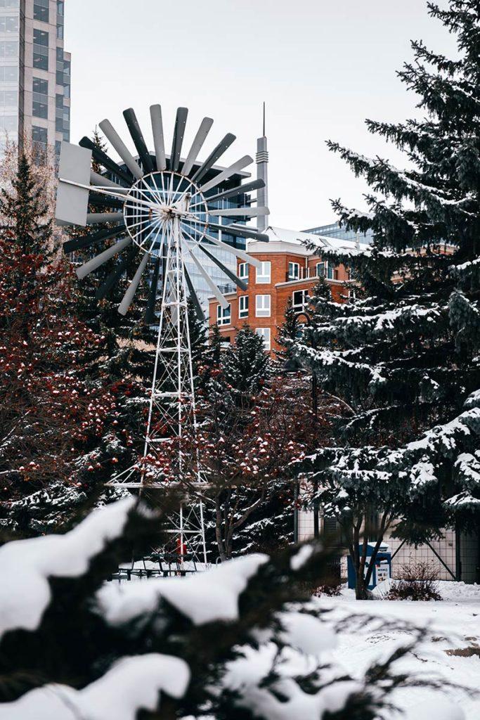 quartier de Chinatown Calgary Refuse to hibernate