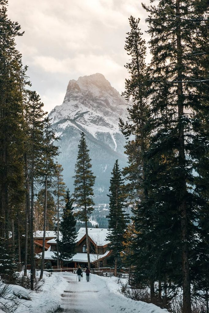 Silvertip to Eagle Heights Canmore Refuse to hibernate