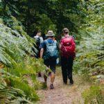 traversée de la forêt de Rambouillet sur 2 jours avec Helloways