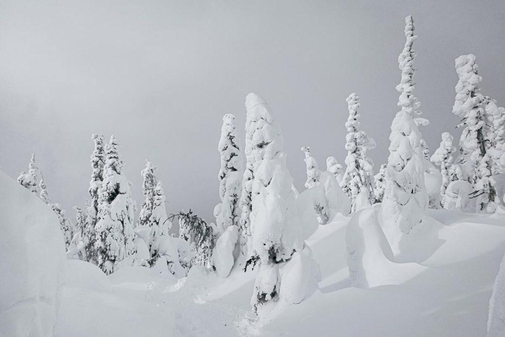 Randonnée en raquettes dans la Vallée des Fantômes